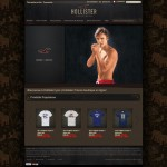 Home page Hollister France cybersquatting