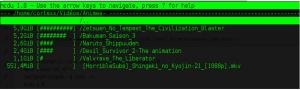 Liste de fichiers vidéos avec le paquet NCDU